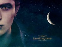"""Breaking Dawn Part 2"" Forever mediocre.-"