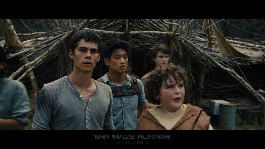 The-Maze-Runner-Film-image-the-maze-runner-film-36484029-1920-1080