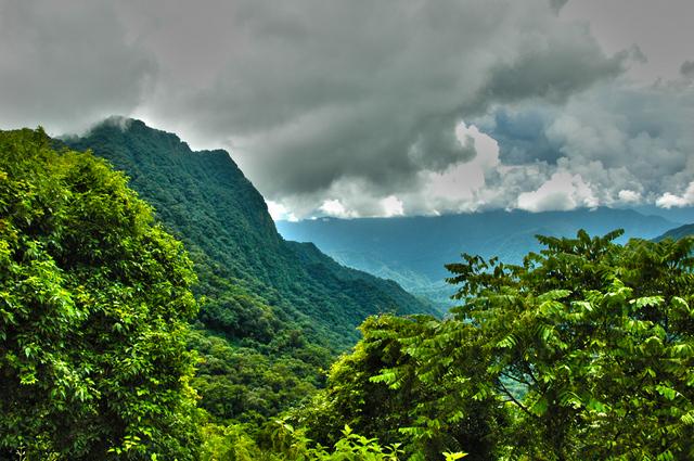 Foto de la Reserva Privada Loma Chata (Jujuy), perteneciente a la RARNAP
