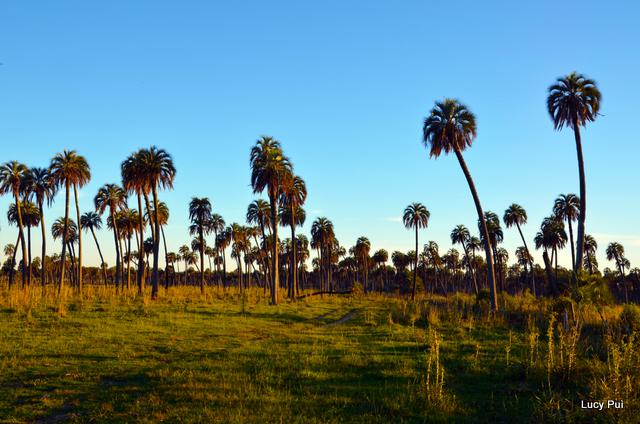 Encuentro-Reservas-Naturales-Privadas-23